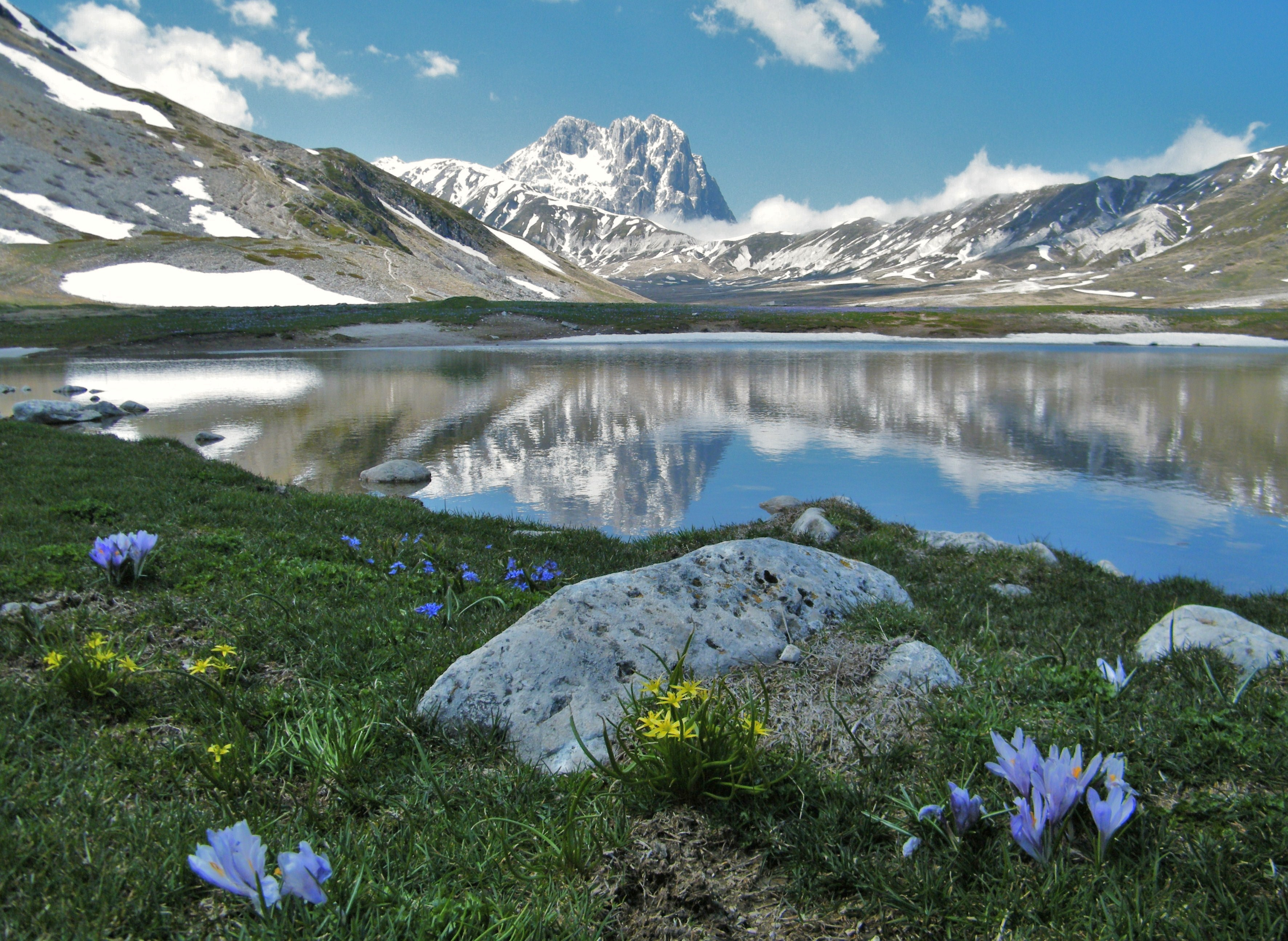 Risultati immagini per Parco Nazionale del Gran Sasso