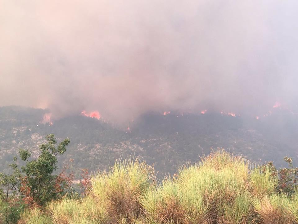 Incendio Morrone, vento riattiva fiamme alte fino a 10 metri