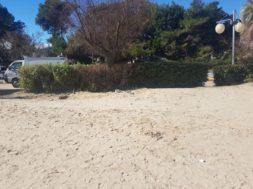 spiaggia sgomberata 2