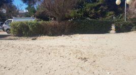 Bivacco, sgomberata la spiaggia antistante via Firenze