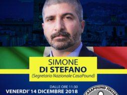 Locandina conferenza stampa Di Stefano