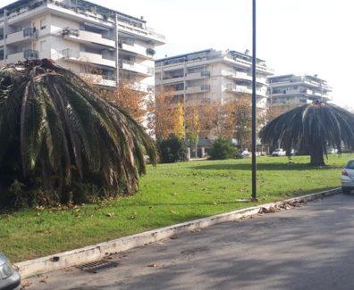 degrado verde pp1 montesilvano