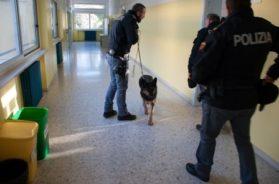 foto-2-prevenzione-droga-nelle-scuole