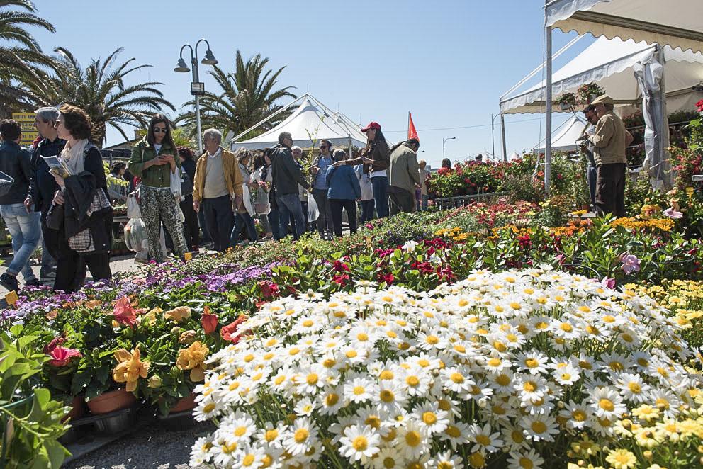 Pescara, taglio del nastro della mostra del Fiore Florviva: presente Marsilio