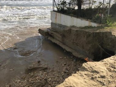 erosione pineto