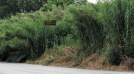 Strade provinciali disastrate: la denuncia del Pd Colonnella FOTO
