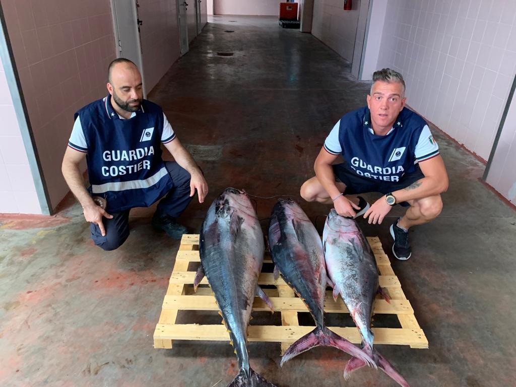 Controlli pescherecci Giulianova, sequestrati prodotti ittici