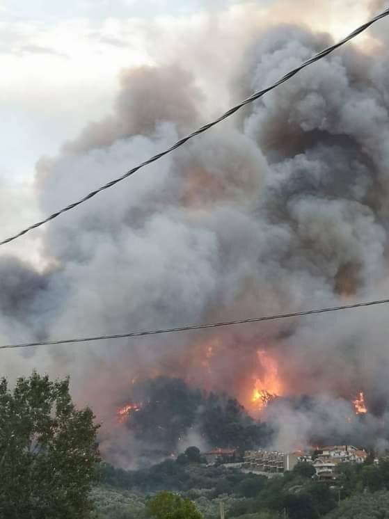 Incendio Colle Renazzo, sindaco Masci attiva il Coc