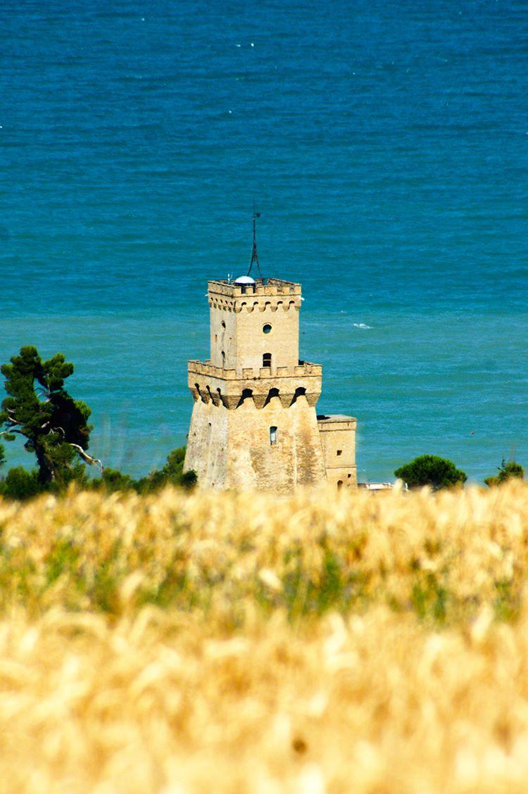 AMP Torre Cerrano, Comune di Pineto deposita ricorso al Tar