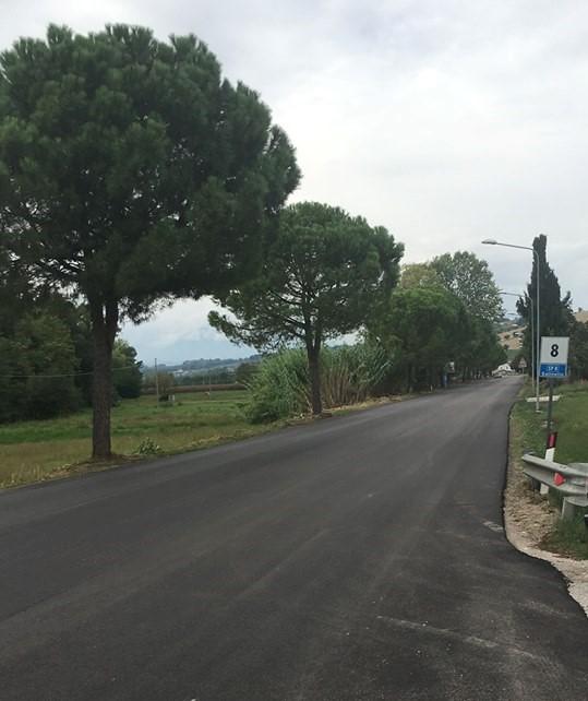 Bonifica Salinello, al via i lavori di rifacimento dell'asfalto deteriorato